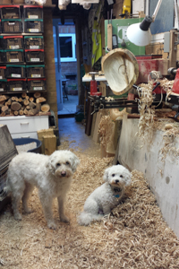 dogs at lathe